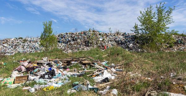 Земельный участок размещения свалки твердых бытовых отходов, предполагаемой под рекультивацию в г. Бологое, ИЭИ